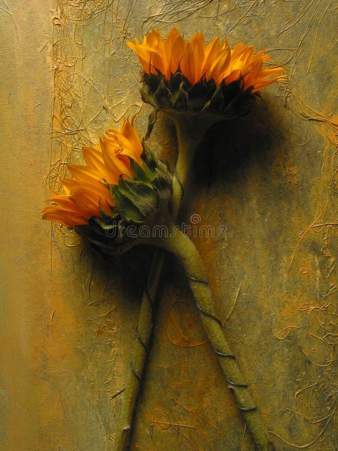 Sonnenblumen stock abbildung