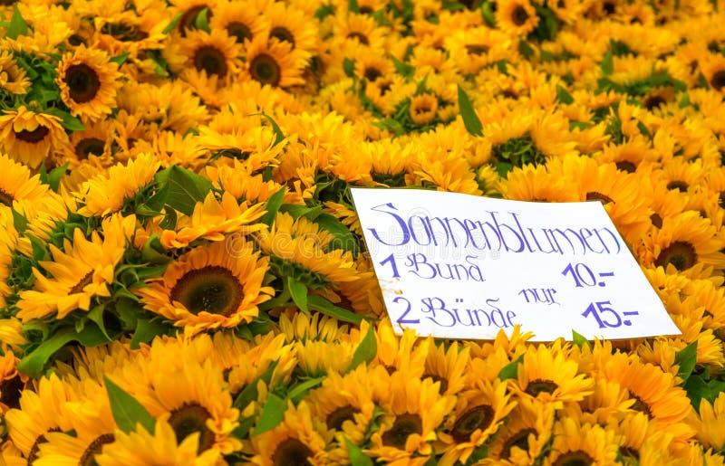 Sonnenblumen für Verkauf stockbilder