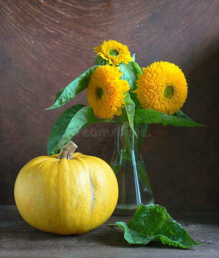 Sonnenblumen mit Kürbis lizenzfreie stockfotos