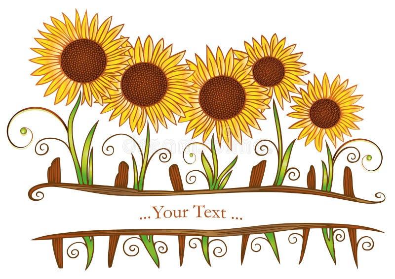Sonnenblumen, Sommer lizenzfreie abbildung