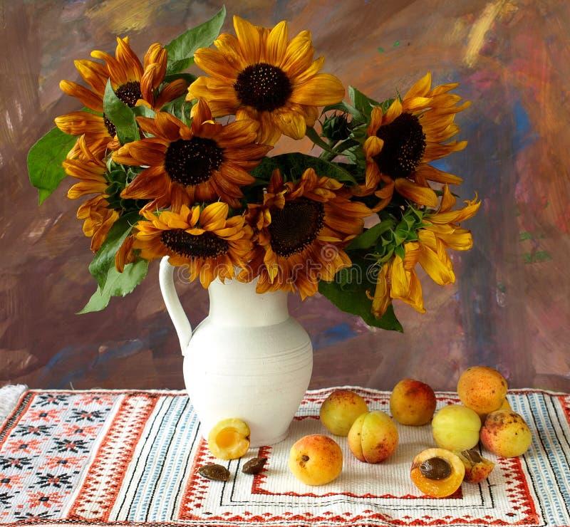 Sonnenblumen und Aprikosen stockfotos