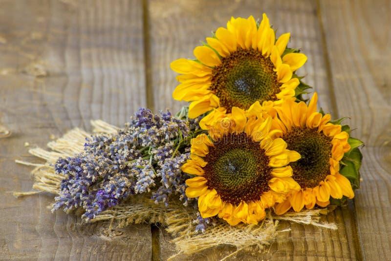 Sonnenblumen und Lavendel stockfotos