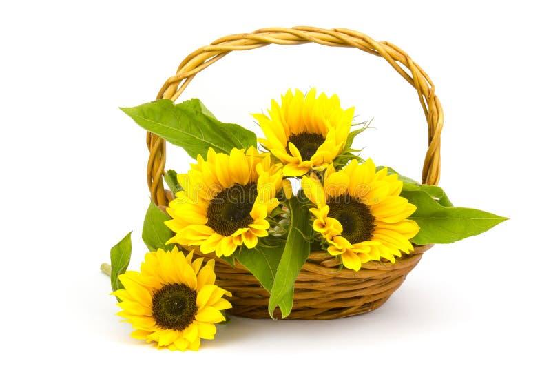 Sonnenblumenblumenstrauß in einem Korb lizenzfreie stockfotos