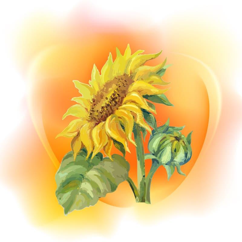Sonnenblumenrahmenhintergrund vektor abbildung