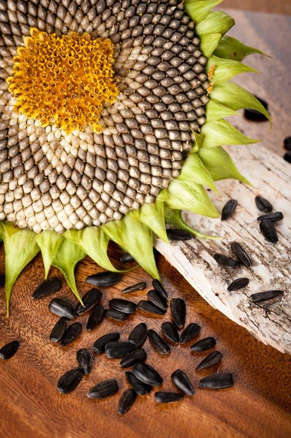 Sonnenblumensamen auf der Tabelle stockfotos