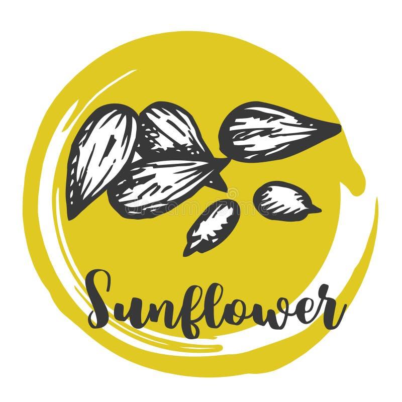 Sonnenblumensamen Weinlesehandzeichnung von Samen Vector Retro- Design der Illustration stock abbildung