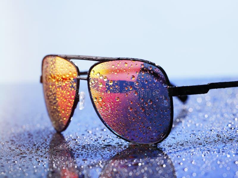 sonnenbrille stockfotos