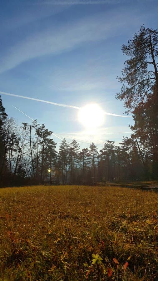 Sonnenhimmel lizenzfreies stockfoto