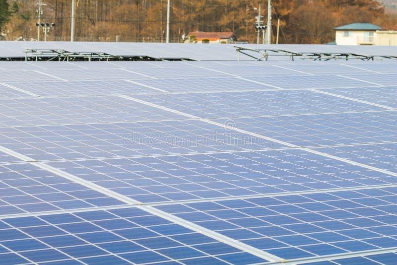 Sonnenkollektor, photo-voltaische Module f?r gr?ne Energie der Innovation stockfotos