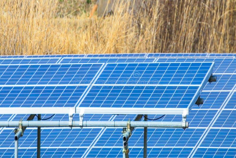 Sonnenkollektor, photo-voltaische Module für Innovation grünen Energie FO stockfotografie