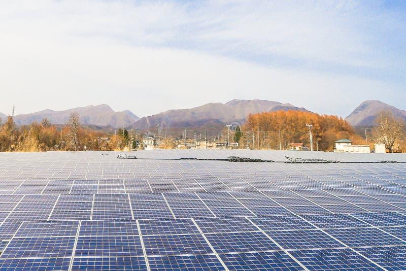 Sonnenkollektor, photo-voltaische Module für Innovation grünen Energie FO stockbilder