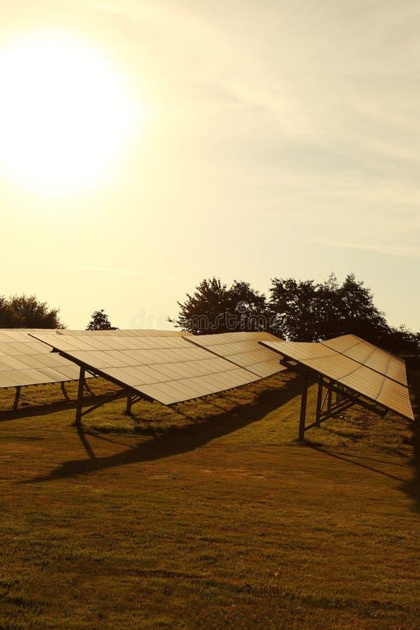 Sonnenkollektoren bewirtschaften auf einem Gebiet in der Landschaft stockfotografie