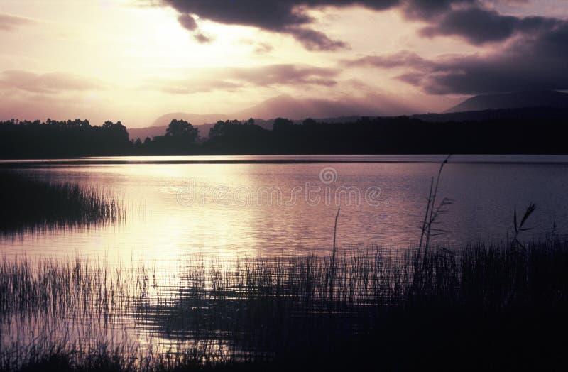 Sonnenlicht des frühen Morgens nachgedacht über See stockbild
