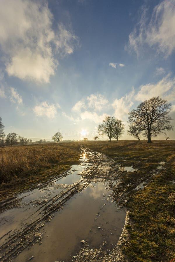 Sonnenschein nach Regen stockfotografie