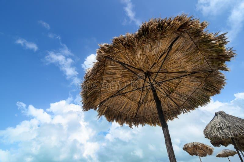 Sonnenschutzregenschirme hergestellt von den Palmen und vom blauen bewölkten Himmel lizenzfreie stockbilder