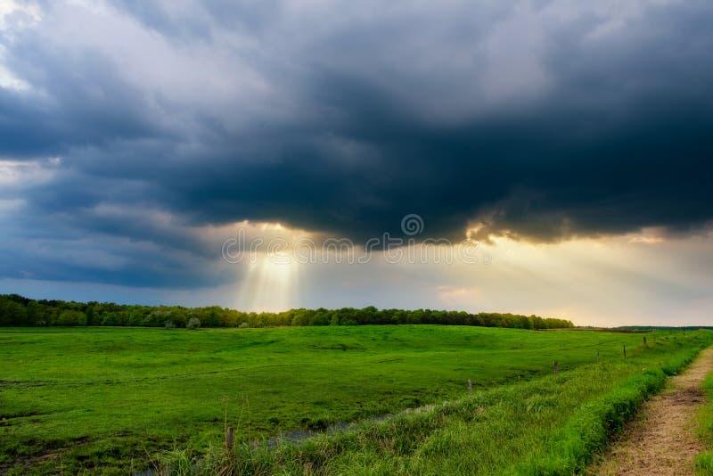 Sonnenstrahlen über dem stürmischen Feld lizenzfreies stockfoto