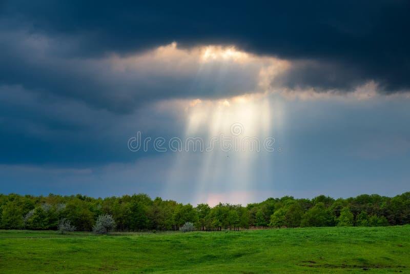 Sonnenstrahlen über dem stürmischen Feld lizenzfreie stockfotografie