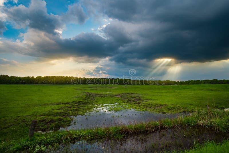 Sonnenstrahlen über dem stürmischen Feld lizenzfreies stockbild
