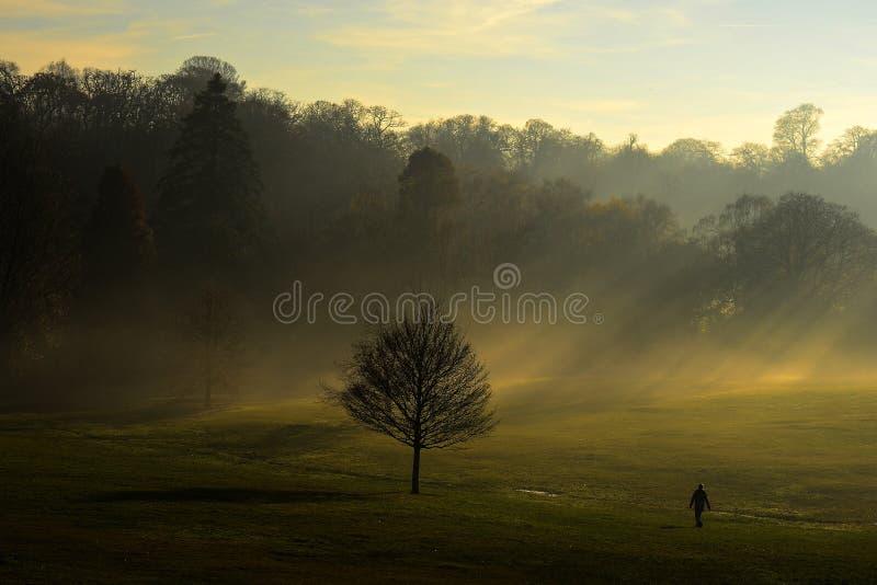 Sonnenstrahlen über Hampstead London lizenzfreie stockbilder