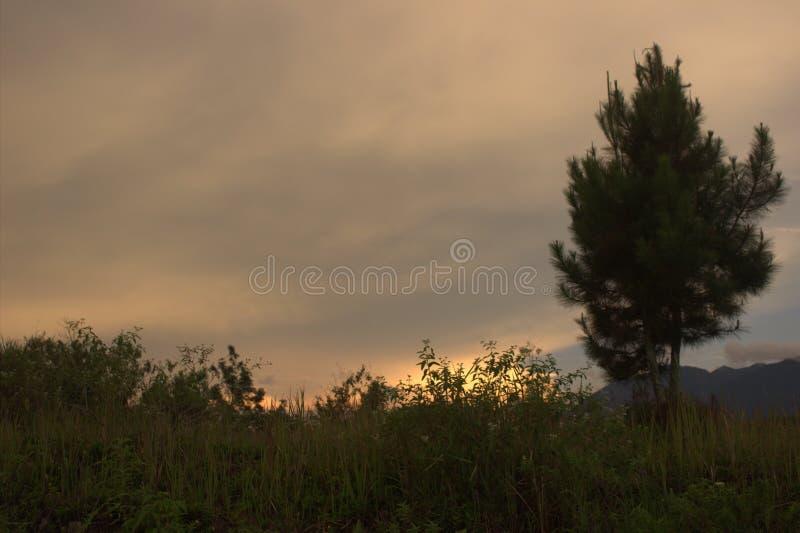 Sonnenuntergänge montain stockbilder
