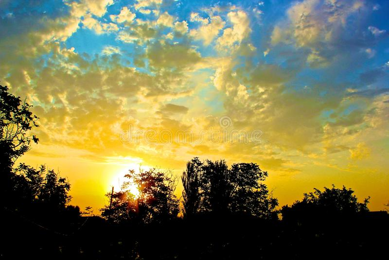 Sonnenuntergang über dem Baum hinaus stockbilder