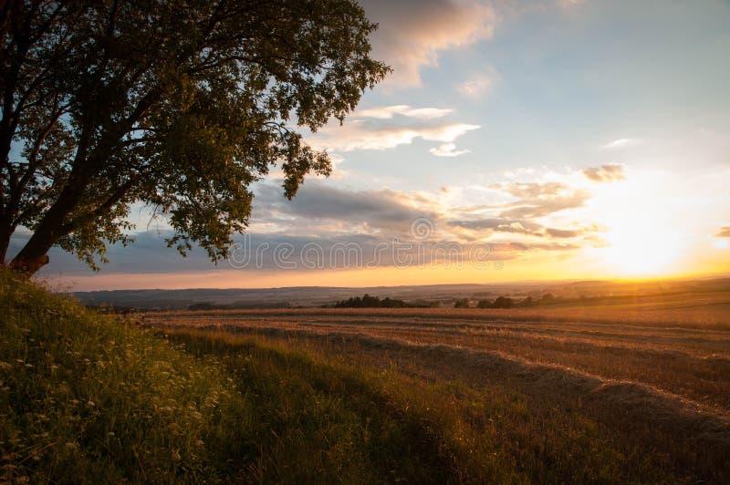 Sonnenuntergang über dem geernteten Feld lizenzfreie stockbilder