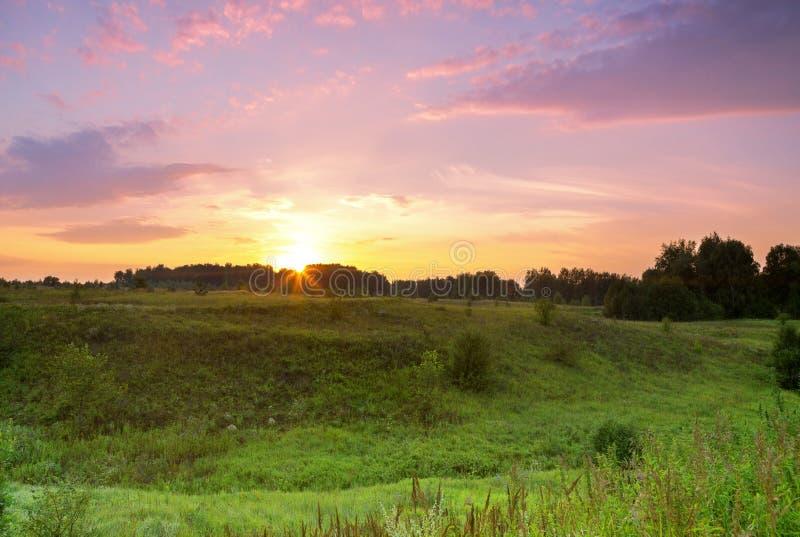 Sonnenuntergang über dem Waldgrün-Wiesenschluchtsonnenuntergang stockfotos