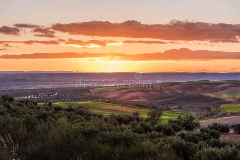 Sonnenuntergang über den Feldern stockfoto