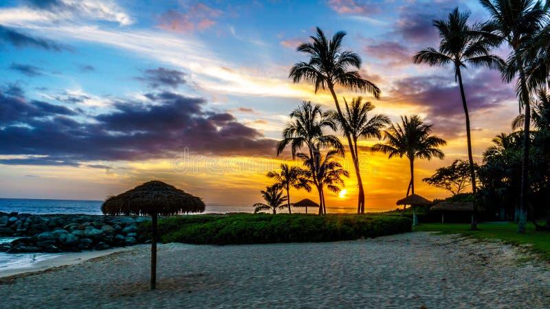 Sonnenuntergang über der Lagune und dem Strand mit Palmen und buntem Himmel stockfotos