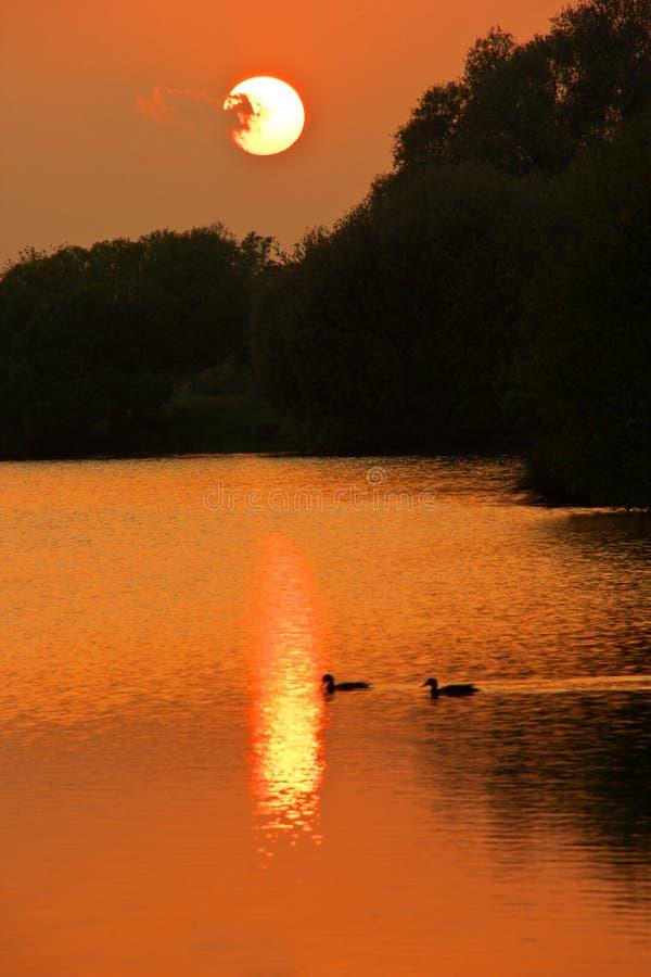 Sonnenuntergang über einem See im cambridgeshire lizenzfreie stockfotos