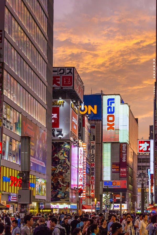 Sonnenuntergang über elektrischer Stadt Tokyos Akihabara lizenzfreie stockbilder