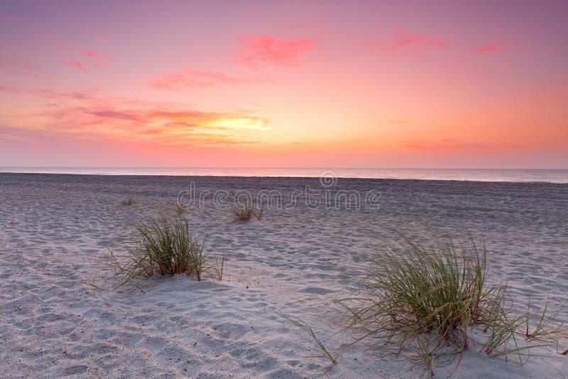 Sonnenuntergang über Florida-Küstenlinie lizenzfreie stockbilder