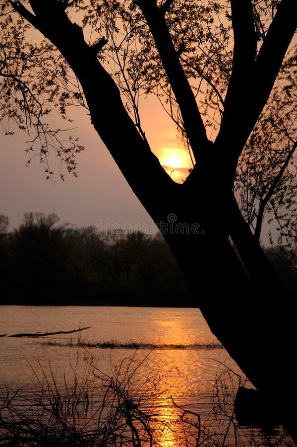 Sonnenuntergang über Fluss stockbilder