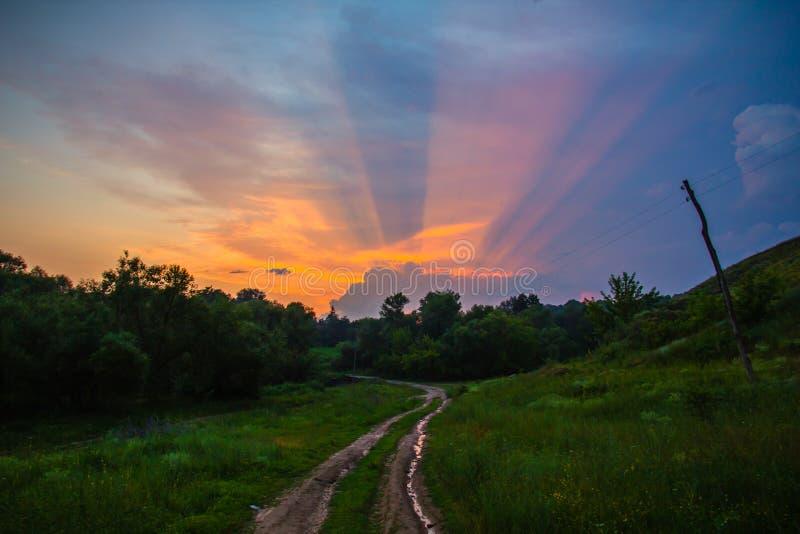 Sonnenuntergang über grünem Feld stockbilder