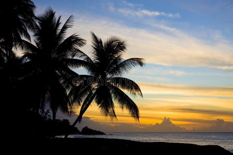 Sonnenuntergang über karibischem Meer, Schildkröten-Strand, Tobago stockbilder