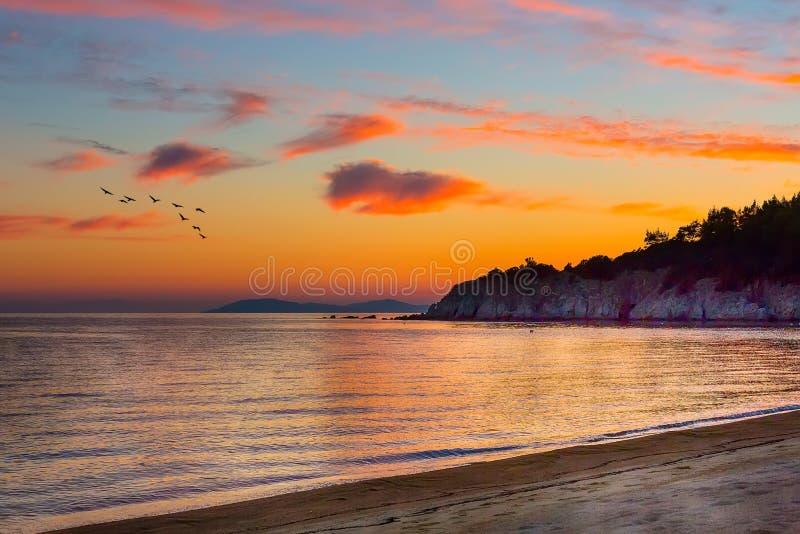 Sonnenuntergang über Meer mit Wolken und Vögeln stockbild