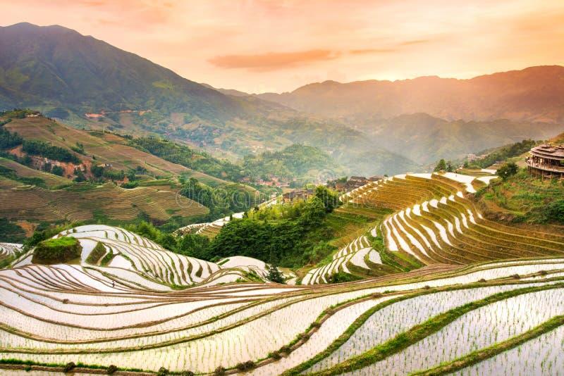Sonnenuntergang über terassenförmig angelegtem Reisfeld in Longji, Guilin in China stockbild