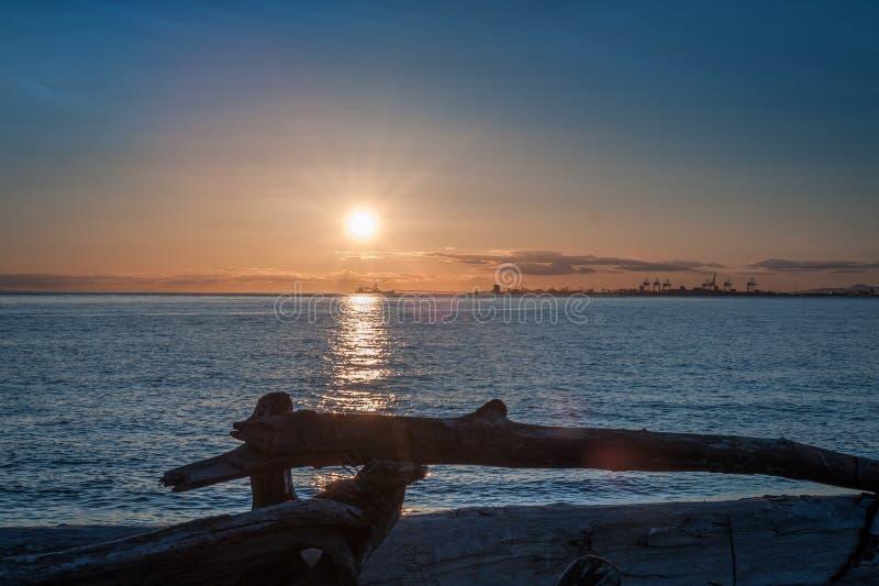 Sonnenuntergang über Treibholz in der Dämmerung stockfotos