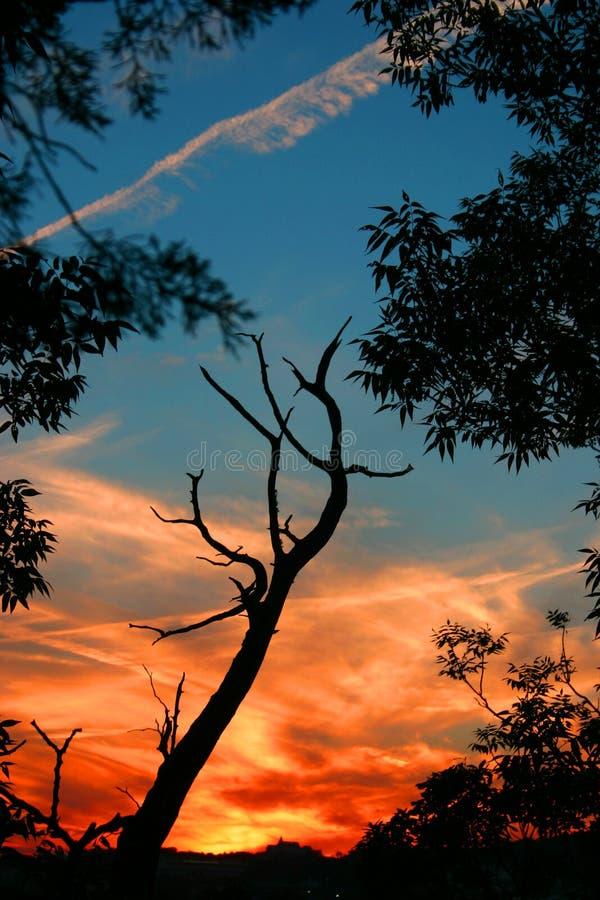 Sonnenuntergang 3 Lizenzfreies Stockbild