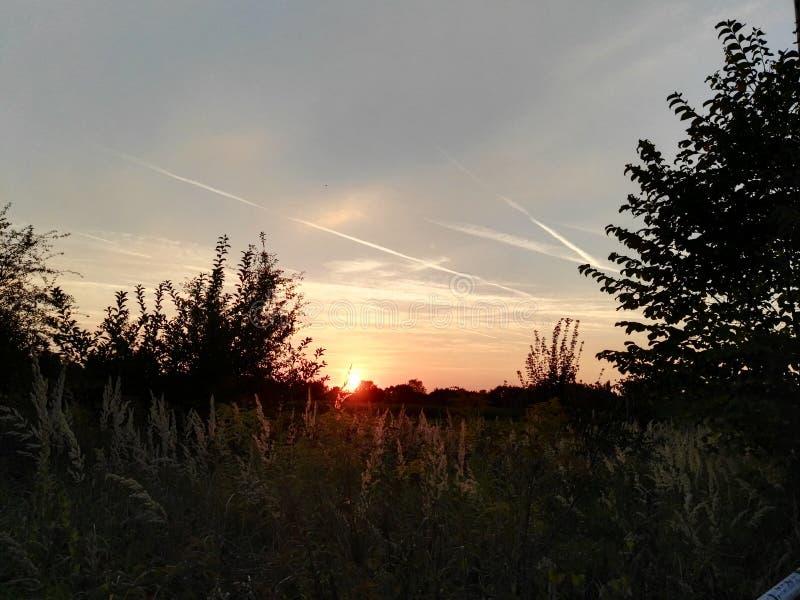 Sonnenuntergang royaltyfria bilder