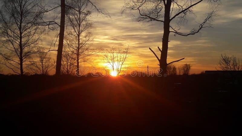 Sonnenuntergang 库存照片