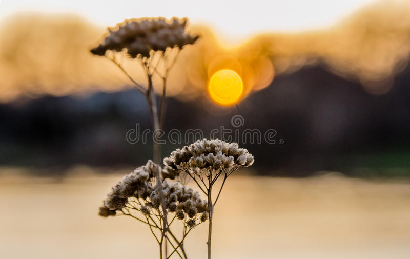 Sonnenuntergang auf dem Äquinoktikum lizenzfreies stockbild