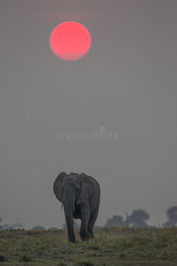 Sonnenuntergang auf dem Choebe stockfotografie