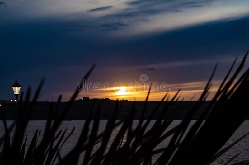 Sonnenuntergang auf dem Malta-Seeansicht thruought Gras, blauer Himmel, vibrierende Farben stockfotografie