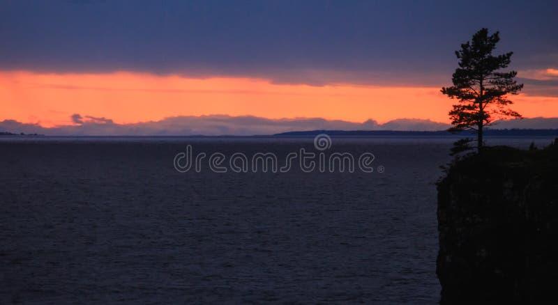 Sonnenuntergang auf dem See und dem Baum lizenzfreie stockfotografie