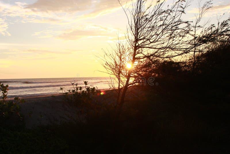 Sonnenuntergang auf dem Strand stockbild