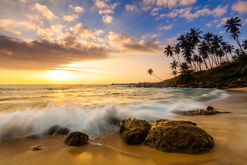 Sonnenuntergang auf dem Strand mit Kokosnusspalmen lizenzfreie stockbilder