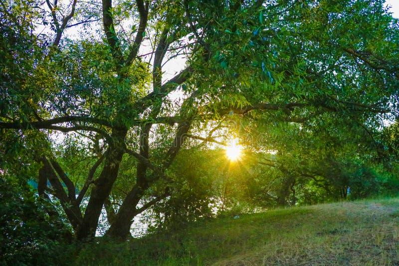 Sonnenuntergang auf der Sonnenuntergangslandschaft des Flusses. Die Wolken mit Sonnenlicht über dem Fluss, Dämmerung Himmel stockfoto