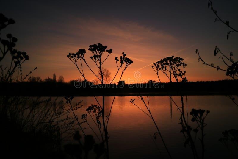 Sonnenuntergang auf einem Meer in Deutschland lizenzfreies stockfoto