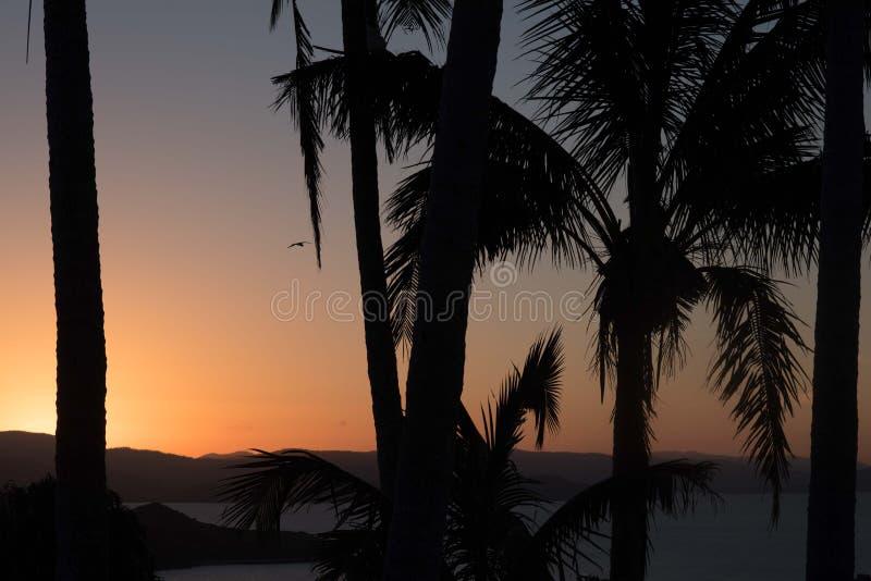 Sonnenuntergang auf Hamilton Island, Australien stockfotografie